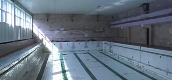 Бассейн Дельфин